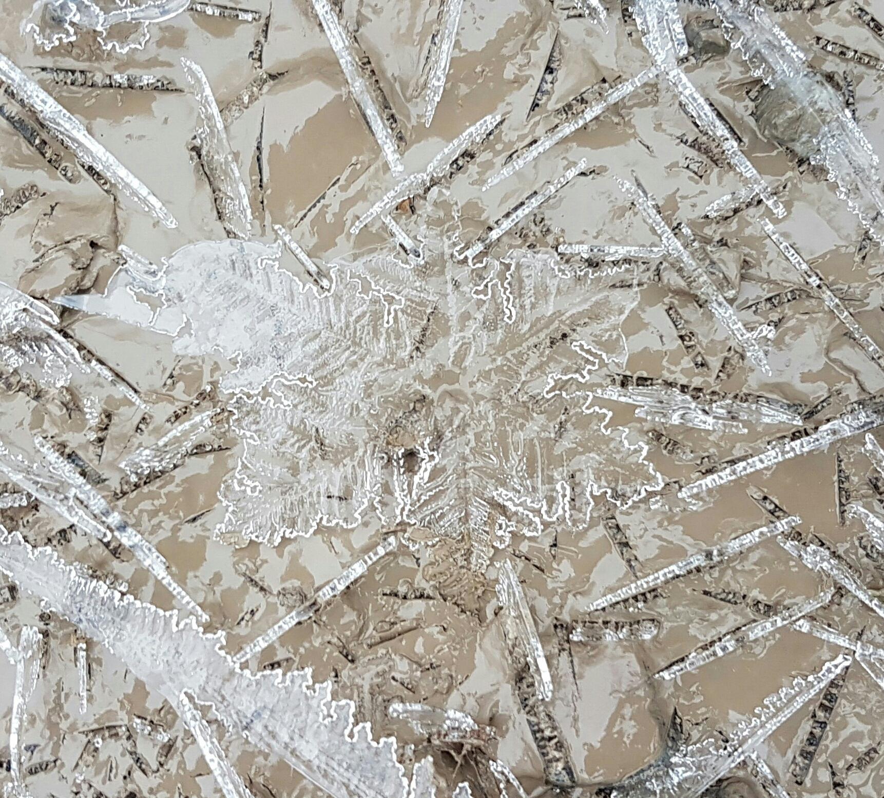 Eisblume | Iceflower